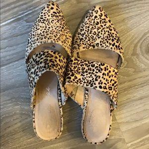 Matisse leopard Berlin